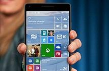 Tương lai nào cho Windows Phone?