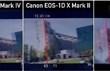 [Video] So sánh hiện tượng Jello khi quay 4K của Canon 5D mark IV với Canon 1DX mark II & Sony A6300