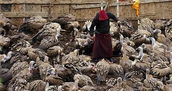 Kỳ thú chuyện cho kền kền ăn thịt người của người Tây Tạng