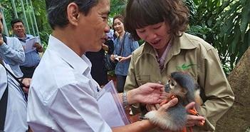 Kỳ thú lễ đặt tên cho voọc tại Thảo Cầm Viên Sài Gòn