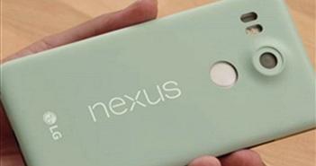 Xuất hiện video trên tay Nexus 5X, giá bán từ 379 USD