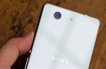 Máy ảnh trên Xperia Z3 và Z3 Compact gặp hiện tượng hồng tâm