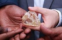 Mục sư đào được kim cương khổng lồ và hành động bất ngờ