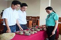 Phát hiện công xưởng chế tác rìu đá có niên đại hơn 5.000 năm ở Gia Lai
