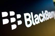 BlackBerry bị tố khai man số Priv bán ra