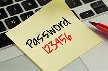 Cách bảo vệ các loại tài khoản Internet sau nguy cơ bị lộ mật khẩu