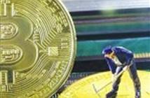 Giá trị vốn hóa thị trường tiền mã hóa lên tới gần 600 tỷ USD