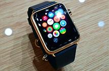 Những đặc quyền chỉ người mua Apple Watch Edition mới được hưởng