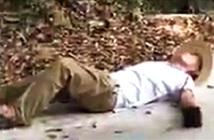 Người đàn ông cầm rắn chết tạo dáng chụp ảnh và kết thảm thương