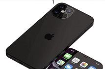 Cộng đồng thiết kế iPhone 6 đã giúp Apple tạo ra iPhone 12?