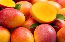 2 loại trái cây nên ăn hằng ngày