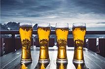 Biến nước tiểu thành…bia bằng năng lượng mặt trời