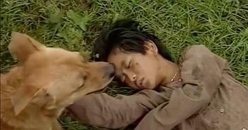 Video: Chú chó mang lựu đạn cứu Tư 'Võ Tòng' gây xúc động ở 'Đất phương Nam'