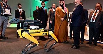 Chó robot của Boston Dynamics đã mở bán, giá ngang xe hơi