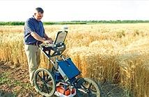 Ứng dụng công nghệ thông tin cho nông nghiệp