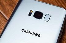 Một số người dùng Galaxy S8 gặp lỗi camera không thể lấy nét tự động