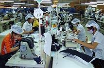 23 người Việt mới làm bằng một lao động Singapore
