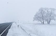 Lý do mùa đông khắc nghiệt hơn dù khí hậu ấm lên toàn cầu