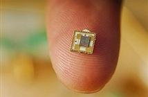 Intel công bố sản xuất thử chip 7nm trong năm nay