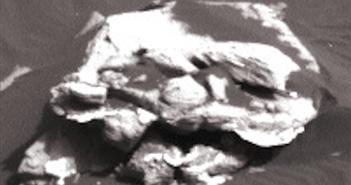 Bí ẩn khuôn mặt như dị nhân, tìm thấy trên sao Hỏa