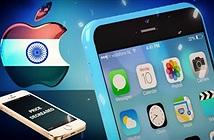 """Ấn Độ nói """"không"""" với iPhone đã qua sử dụng của Apple"""