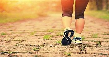 Chuyên gia Harvard: cách đi bộ cực dễ giảm 41% nguy cơ chết sớm