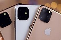Rộ tin đồn về ngày bán ra iPhone 11, iFan lót dép chờ đợi