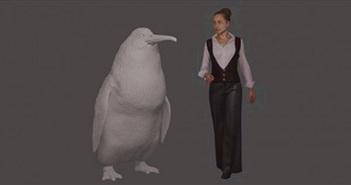 Chim cánh cụt từng cao ngang người trưởng thành