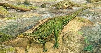 """Hãi hùng """"quái thú"""" 193 triệu tuổi da đầy gai, xương đầy đinh tán"""