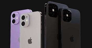 """Apple iPhone 12 xuất xưởng """"trần trụi"""", giá khởi điểm 16 triệu đồng"""