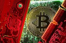 Bitcoin không chịu xuống giá sau khi cán mốc kỷ lục 6.300 USD