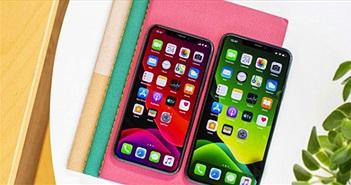 """iPhone 12 màn hình """"chất"""" thế này thì không có đối thủ"""