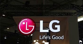 LG tạm dừng xây dựng nhà máy màn hình trị giá 8,1 tỷ USD